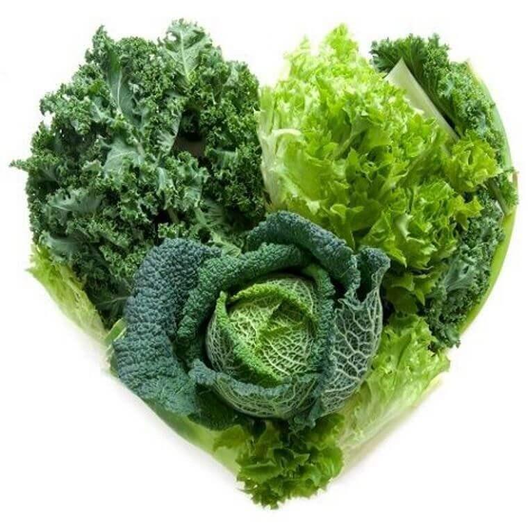 Grünes Blattgemüse