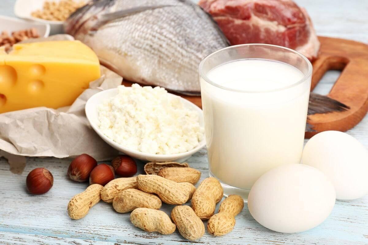 Eiweiß Protein