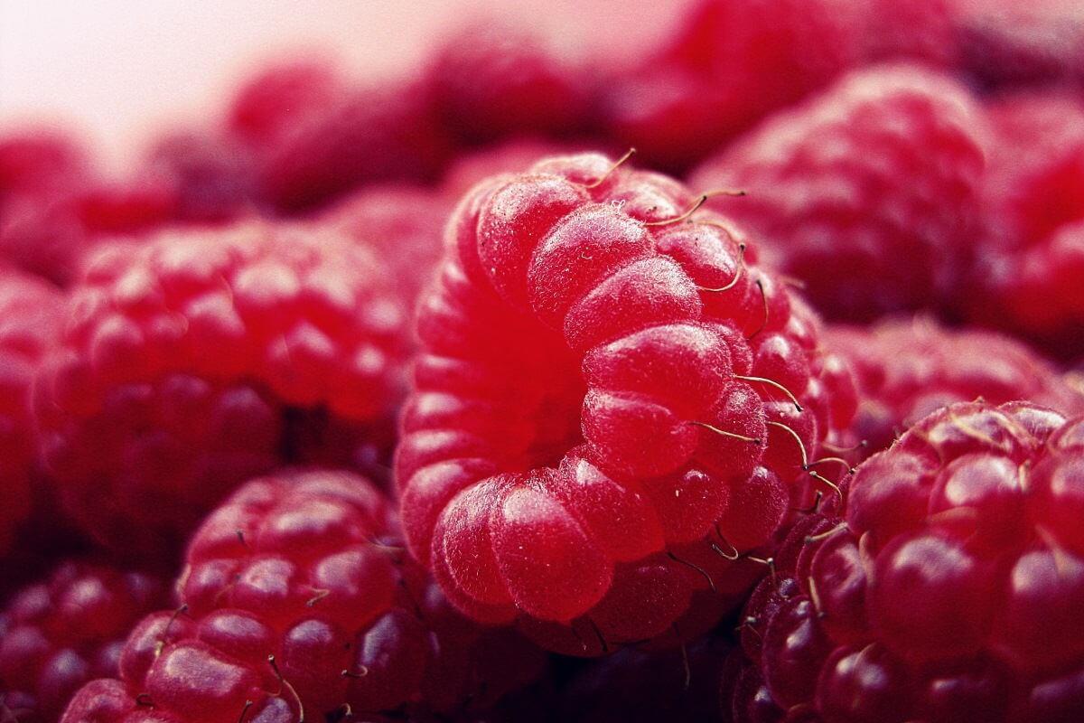 Himbeer-Marmelade