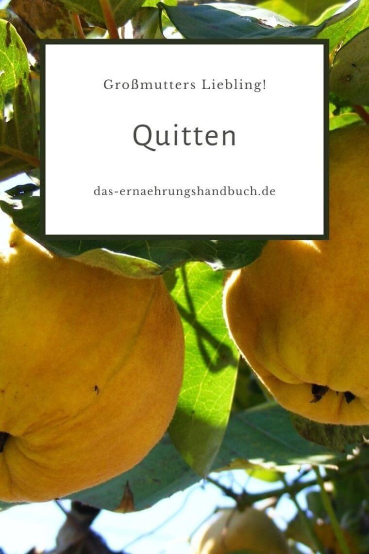 Quitten