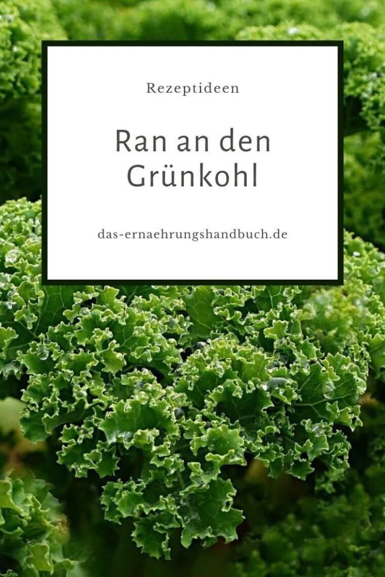 Grünkohl-Rezepte