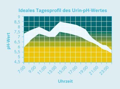 Tagesprofil pH-Wert