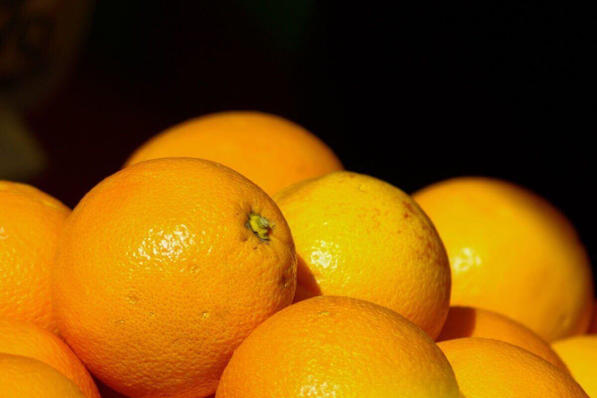 Orangen-Rezepte