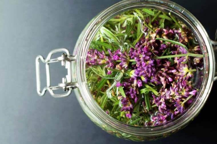 yeoldekitchen - Lavendelessig als Weichspüler