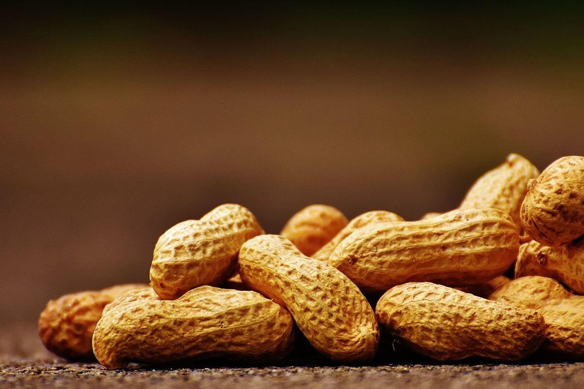 Lebensmittel-Allergie