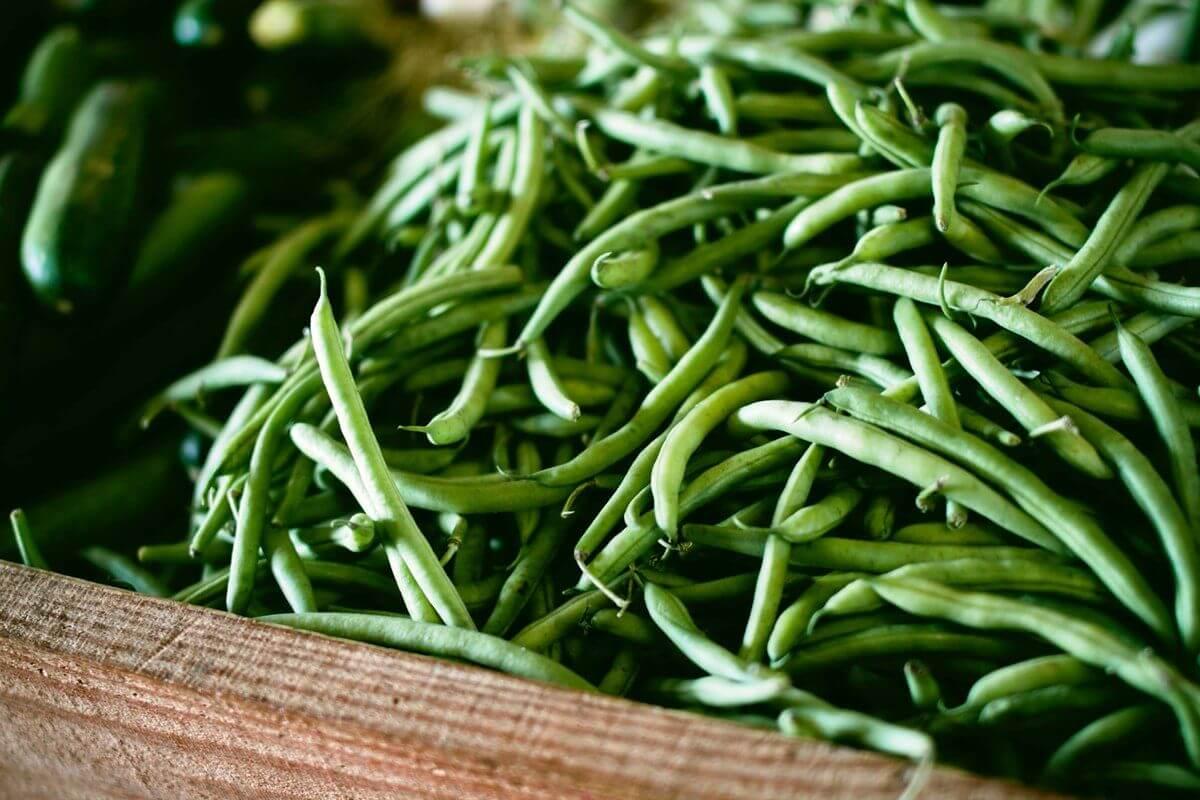 grüne-Bohnen