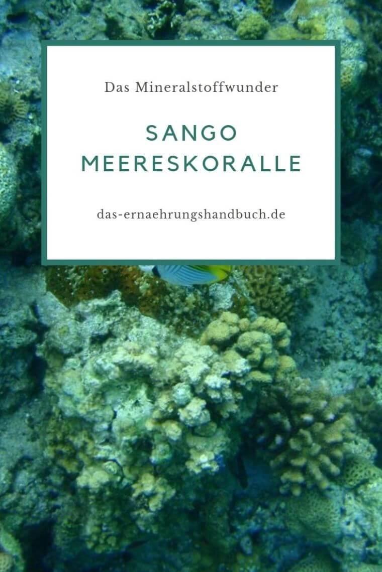 Sango Meereskoralle