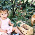 Nachhaltige Ernährung Kinder