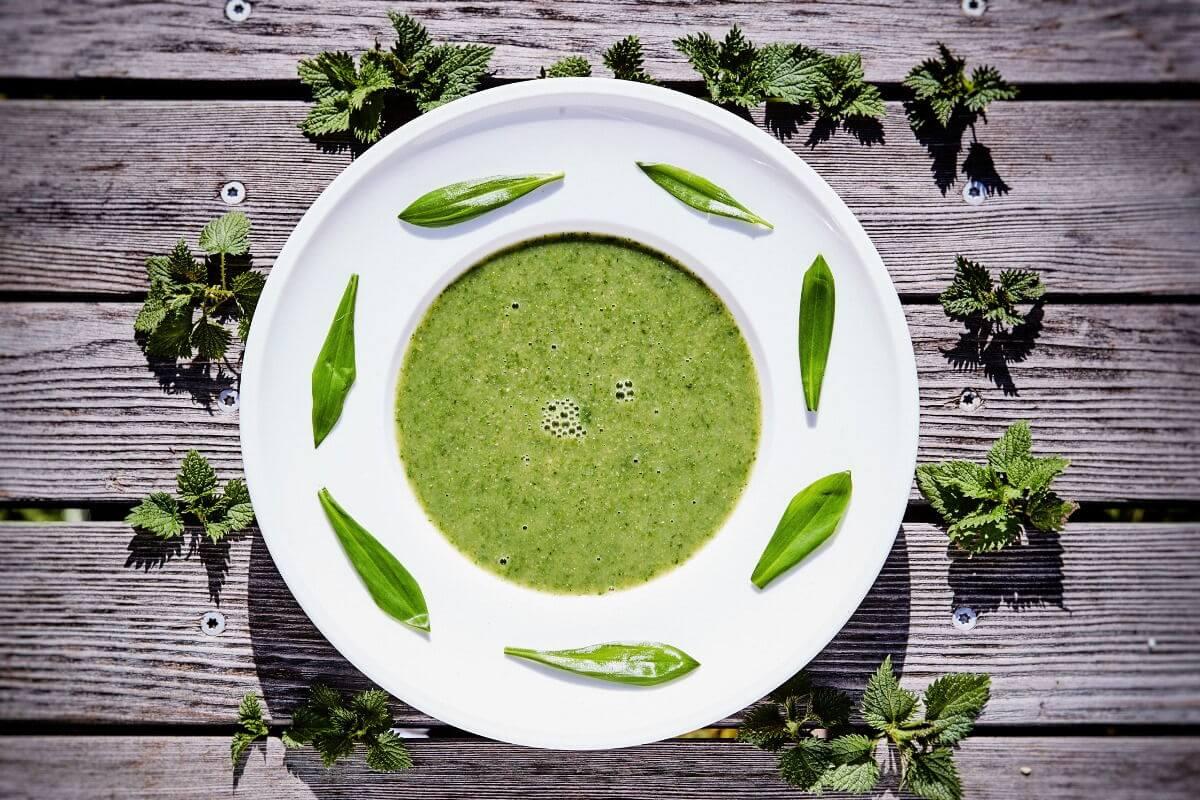 Brennnessel-Bärlauch-Suppe