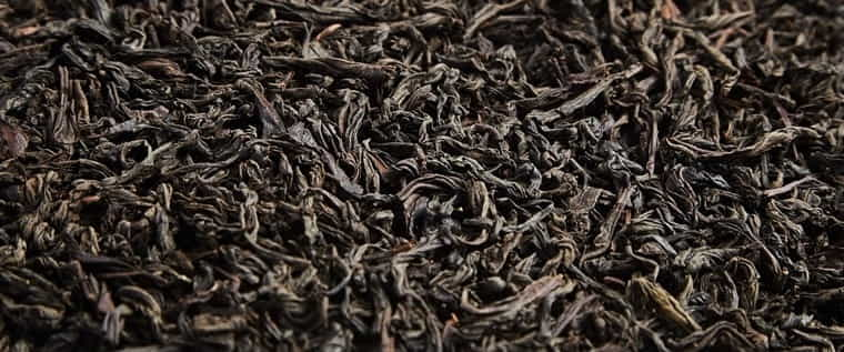 Schwarzer Tee, Darjeeling
